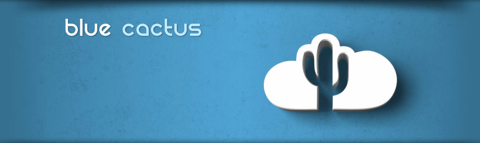 blue cactus backups - online data backup solution